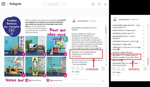 vote-chantiers-peupins-instagram.png